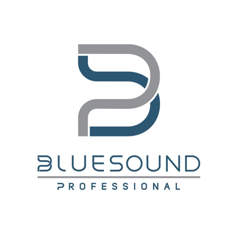 Bluesound Professional image